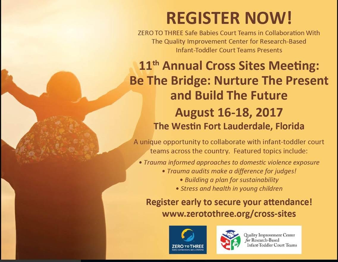 11th Annual Cross Sites Meeting: Be The Bridge: Nurture The Present And  Build The Future